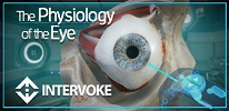 The Physiology of the Eye
