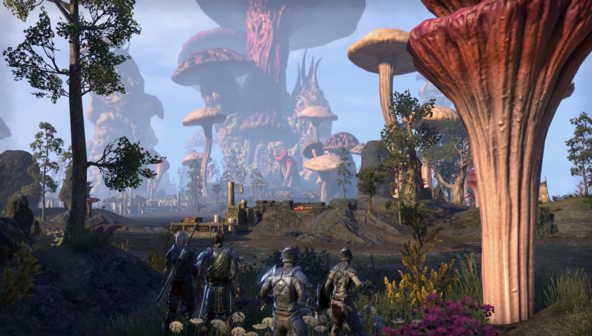 The Elder Scrolls Online - Morrowind Upgrade screenshot